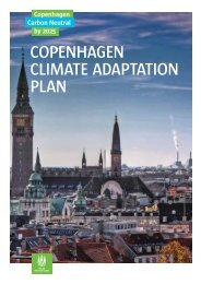 COPENHAGEN CLIMATE ADAPTATION PLAN
