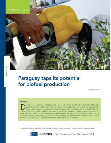 Paraguay taps its potential for biofuel production