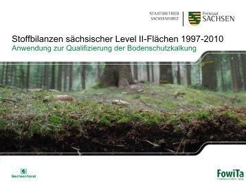 Menzer_Stoffbilanzen sächsischer Level II.pdf