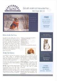 Winter Senior Pet Core - Canterbury Vets - Ashburton and Methven ...