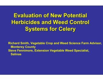 Celery Weed Control September 20, 2007 - Monterey County