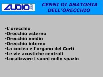 CENNI DI ANATOMIA DELL'ORECCHIO
