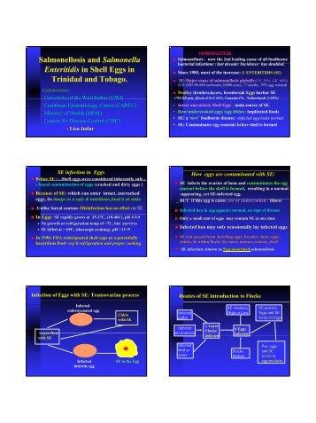 Salmonellosis eggs Trinidad.pdf - Caribvet
