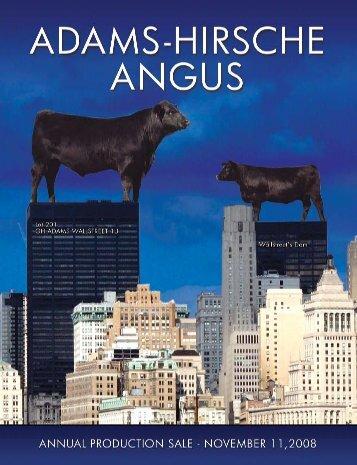 Hirsche Herefords Catalog 2008 - Hirsche Herefords & Angus