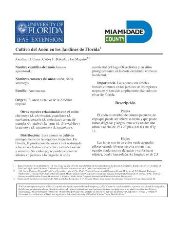 (Cultivo del Anon en los jardines de Florida) - Miami-Dade County ...