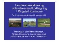 Landskabskarakter- og oplevelsesværdikortlægning i Ringsted ...