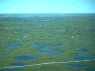 09/25/12 - 01: Wetlands