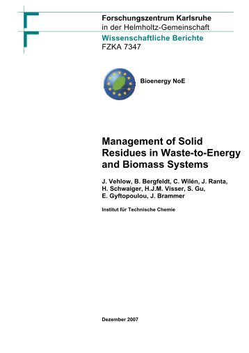 Management of Solid Residues in Waste-to-Energy and ... - FZK