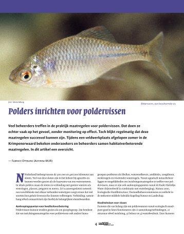 Polders inrichten voor poldervissen - VeldwerkPlaatsen