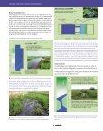 Polders inrichten voor poldervissen - VeldwerkPlaatsen - Page 3