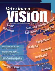 Fall 2007 - The University of Tennessee College of Veterinary ...
