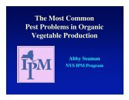 1Mb pdf file - Cornell University
