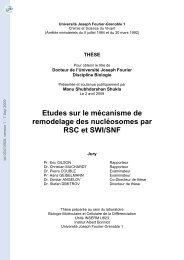 Etudes sur le mécanisme de remodelage des nucléosomes par ...