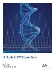 A Guide to PCR Essentials