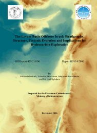 The Hydrocarbon Potential of the Levant basin, Offshore Israel