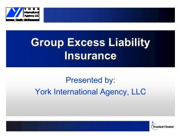 GROUP EXCESS LIABILITY INSURANCE