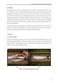 Doo_mini_report_2009 - Inland Fisheries Ireland - Page 5