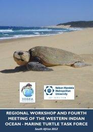 full meeting report - Indian Ocean - South-East Asian Marine Turtle ...