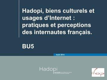64677-hadopi-biens-culturels-et-usages-d-internet-pratiques-et-perceptions-des-internautes-francais