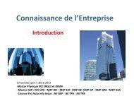 Connaissance de l'Entreprise - Patrick MONASSIER