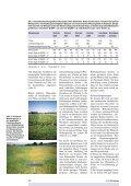Bodenwasser bei Direktsaat und Pflug - Seite 7