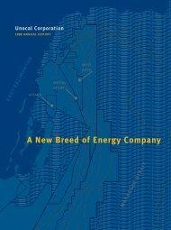 Unocal 1998 Annual Report - Chevron