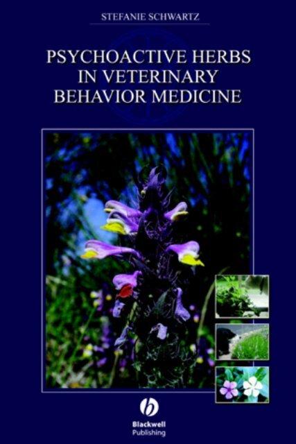 MEDICINAL HERB NON GMO 50+ FRESH Seeds Flowering Balsam Impatients