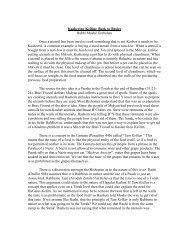 Kashering Keilim: Back to Basics Rabbi Moshe ... - YU Torah Online