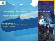 conservation strategy of sandalwood resources in indonesia