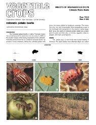 416k pdf file - New York State Integrated Pest Management Program ...