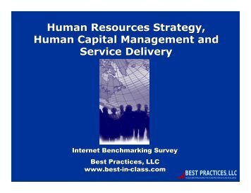 Human Resources Strategy, Human Capital Management and ...