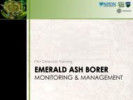 Introduction to EAB - New York Invasive Species Information