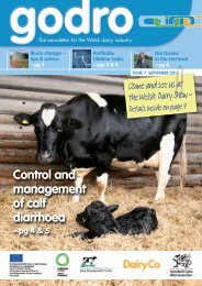 Godro Issue 7 - September 2011 - Dairy Development Centre