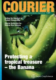 Protecting a tropical treasure – the Banana - Bayer CropScience