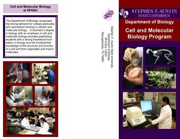 Cell and Molecular Biology Program