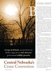Central Nebraska's Crane Convention - Leisure Group Travel