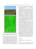 Detection of rice sheath blight for in-season disease management ... - Page 3