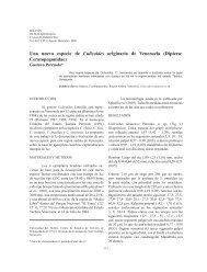 BMSA Nº 2 2006.indb - SciELO