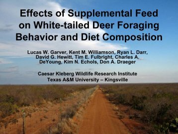 Effects of Supplemental Feed on White-tailed Deer Foraging ...