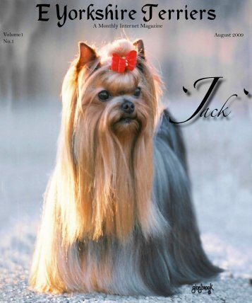 Download August Edition in PDF format - E Yorkshire Terriers
