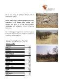 Namibia - Korsholm Jagtrejser - Page 3