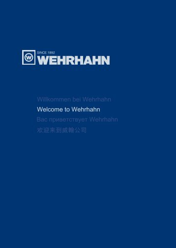 PDF 4775 Kb - Wehrhahn