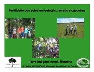 Fertilidade dos solos em quintais, lavrado e capoeiras Terra ...
