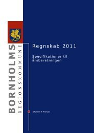 Specifikationer - Bornholms Regionskommune