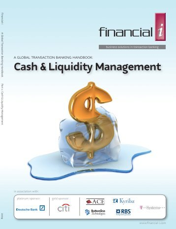 Cash & Liquidity Management - ACE Software Solutions