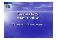 General scheme Natural Condition - Donauregionen