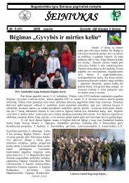 2008-01,Nr.41 - Bagaslaviškio Igno Šeiniaus pagrindinė mokykla