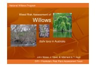 Willows - Weeds Australia