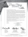 95 Registered Angus Lots…175 Head plus Embryos - A Cross Ranch - Page 2