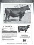 95 Registered Angus Lots…175 Head plus Embryos - A Cross Ranch - Page 5